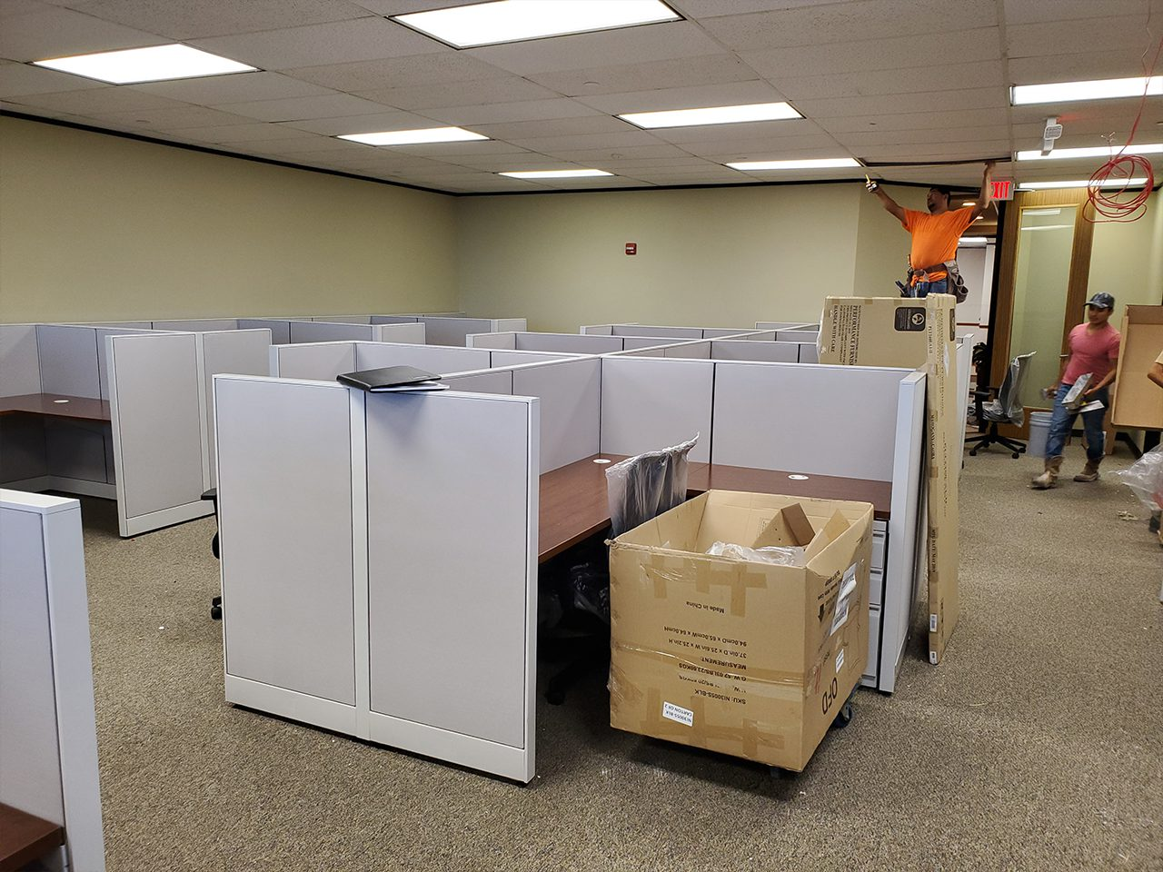 Carrolls Office Furniture Portfolio Project for Benefit Recovery